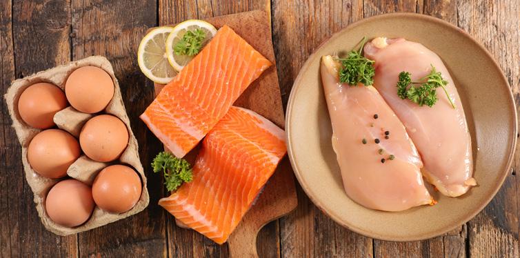 protein-reiches-essen